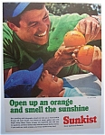 1966 Sunkist Oranges