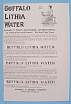 Vintage Ad: 1895 Buffalo Lithia Water