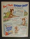 1951 Post's Sugar Crisp