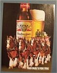 1985 Budweiser Beer