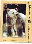 The China Decorator - June 1989