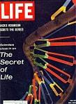 Life Magazine - October 4 1963