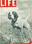 Life Magazine - February 25, 1946