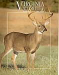 Virginia Wildlife - August 2002