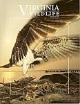 Virginia Wildlife - July 2000