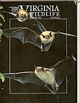Virginia Wildlife - February 2001