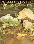 Virginia Wildlife - July 2004
