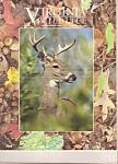 Virginia Wildlife - November 1996