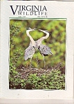 Virginia Wildlife - May 1994