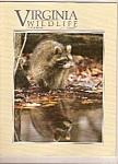 Virginia Wildlife - October 1990
