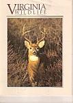 Virginia Wildlife - November 1991