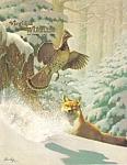 Virginia Wildlife - December 1981