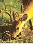 Virginia Wildlife - May 1983
