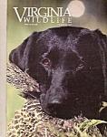 Virginia Wildlife - October 1988
