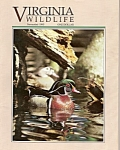 Virginia Wildlife - November 1993