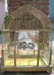 Brass And Glass Antique Bird Cage