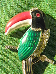 Giant Parrot Toucan Bird Pin