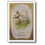 Edwardian Blue Bird Post Card 1910