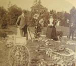 Grave Of Charles Stewart Parnell Dublin Ireland 1891