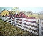 20 X 28 Joseph L. Wantz S/n Art Print Hanover Shoe Farm