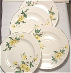 Set Of 2 Edwin Knowles Buttercup Saucers