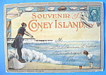 Souvenir Postcard Folder Of Coney Island, New York