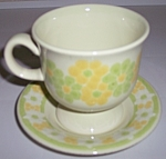 Franciscan Pottery Picnic Cup/saucer Set