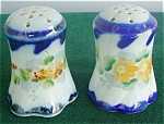 Pr. Of Hand Painted Porcelain Shakers