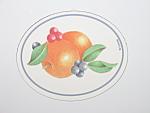Corning Corelle Abundance Oval Kitchen Fridge Magnet