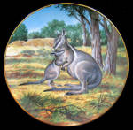 Bridled Wallaby: Last Of Their Kind, Will Nelson,george