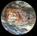 Siberian Tiger: Last Of Their Kind, Will Nelson, George
