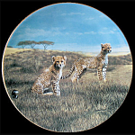 Cheetah: Recess, Nature's Playmates, Charles Frace