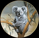 The Koala: Nature's Lovables, Charles Frace Plate
