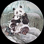 Mother's Care: Secret World Of Pandas, Ws George Plate
