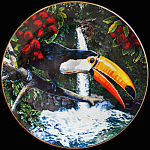 Toco Toucan: Exotic Birds, Hack Royal Cornwall Plate