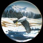 Fierce And Free: Majesty Of Flight, Thomas Hirata