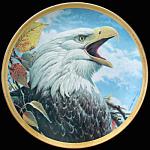 Bold Defiance: Portraits Bald Eagle, John Pitcher Plate