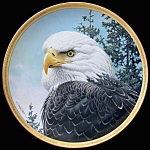 Master Of Summer Skies: Portraits Of Bald Eagle Pitcher