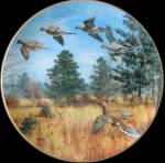 Winged Flurry: Game Birds By David Maass, Danbury Mint