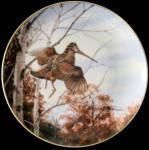 Rising From Shelter: Game Birds By David Maass, Danbury