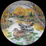 Green Winged Teal: Living With Nature By Bart Jerner