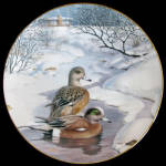 American Widgeon: Living With Nature By Bart Jerner