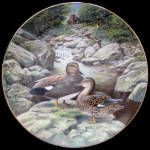 Gadwall: Living With Nature A Bart Jerner, Knowles Plat