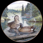 Blue Winged Teal: Living With Nature By Bart Jerner