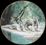 White Tiger: Partners Nature's Playmates, Charles Frace