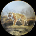 Royal Bengal Tiger: Magnificent Cats, Charles Frace