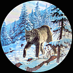 Lynx: Great Cats Of America By Lee Cable, Knowles