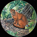 Jaguarundi: Great Cats Of America By Lee Cable, Knowles