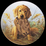 Caught In The Act: Field Puppies By Lynn Kaatz, Knowles