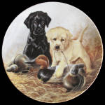 A Perfect Set: Field Puppies Lynn Kaatz, Knowles Plate